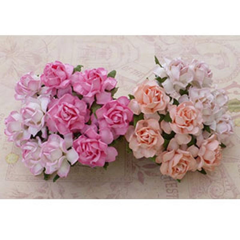 Woc Fleurs Cottage Roses Roses Mixtes