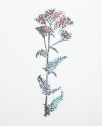 flower soft technique carte scrapbooking