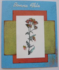 Cartes Flower soft
