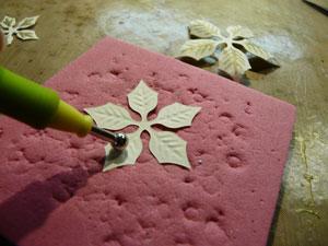 fleurs poinsettia spellbinders