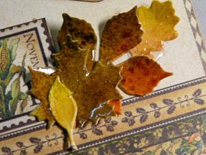Memory box feuilles d'automne, leafs