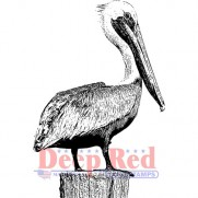 Deep Red Étampe Pelican