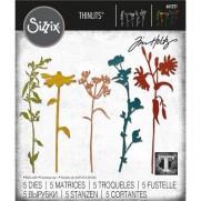 Sizzix Die Thinlits par Tim Holtz Tiges de Fleurs sauvages