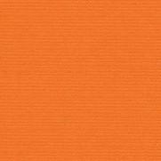 Bazzill Orange
