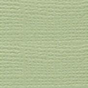 Bazzill Grass Cloth Spring Breeze