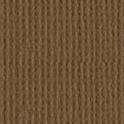 Bazzill Canvas Walnut