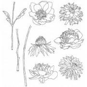 Étampe Flower Garden
