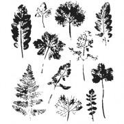 Tim Holtz Étampe Impression de feuilles