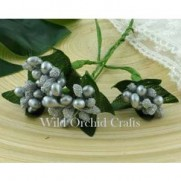 WOC Bead Berry spray clusters argents