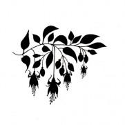 Lavinia Étampe Fuchsia