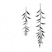 Lavinia Étampe Branche de Saule