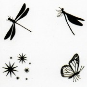 Lavinia Étampe Insectes