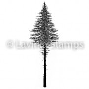 Lavinia Étampe Sapin 2