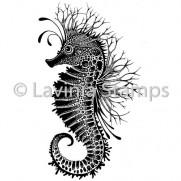 Lavinia Étampe Sebastian l'Hippocampe