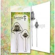 Lavinia Étampe Ensemble Lilium