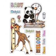 Ciao Bella Étampe Taille et Poids du Bébé