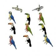 Brads Oiseaux Tropicaux