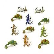 Brads Reptiles