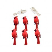Brads Cardinals 2