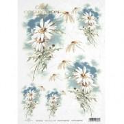 ITD Collection Papier de Riz Marguerites Blanches