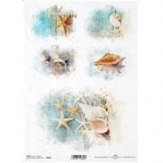 ITD Collection Papier de Riz Coquillages