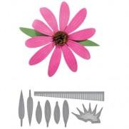 Die D-Lites Fleur Echinacea