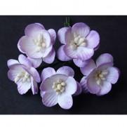 WOC Fleurs Cherry Blossoms lilas 2 tons