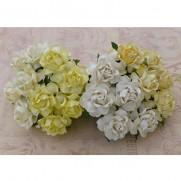 WOC Fleurs Cottage Roses Blanches & Crèmes