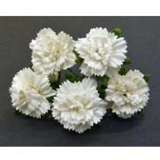 Wild Orchid Craft Fleurs Carnation Off White