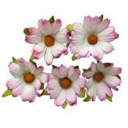 WOC Chrysanthemums Roses 2 tons