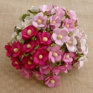 WOC Sweethearth Blossom Roses & Blanches