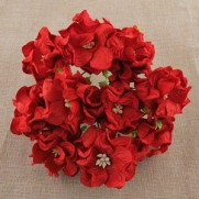 Wild Orchid Craft Fleurs Gardenia rouges