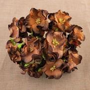 Wild Orchid Craft Fleurs Gardenia chocolats