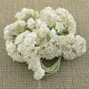 WOC Fleurs Gypsophila  blanches
