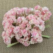 WOC Fleurs Gypsophila  roses-ivoires