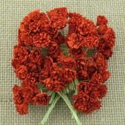 WOC Fleurs Gypsophila  rouges