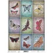 ITD Collection Étiquettes Papillons