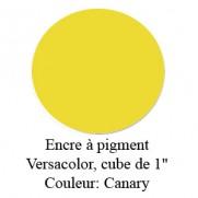 Encre Versacolor Canary