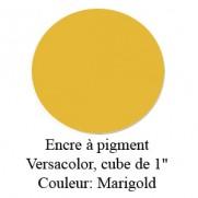 Encre Versacolor Marigold