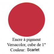 Encre Versacolor Scarlet