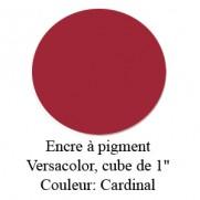 Encre Versacolor Cardinal