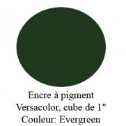 Encre Versacolor Evergreen