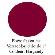Encre Versacolor Burgandy