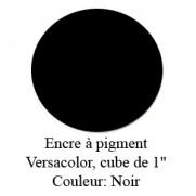 Encre Versacolor Noir