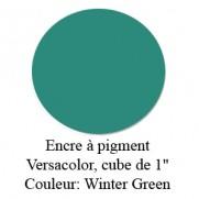 Encre Versacolor Vert Hiver