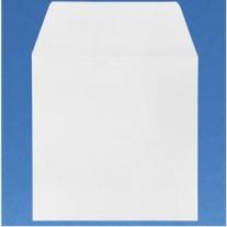 10 enveloppes de 6 X 6 pouces