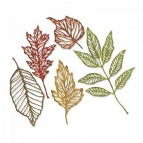 Sizzix Die Thinlits Squelettes de feuilles