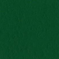 Bazzill Vert classique