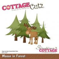 CottageCutz Die Orignal dans la Forêt