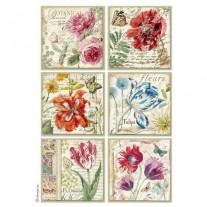 Stamperia Papier de Riz Cartes botaniques
